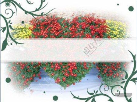 植物花朵PPT模板