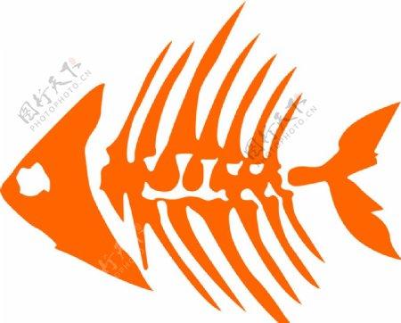 鱼刺鱼骨图片
