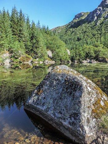 溪流中的大石头