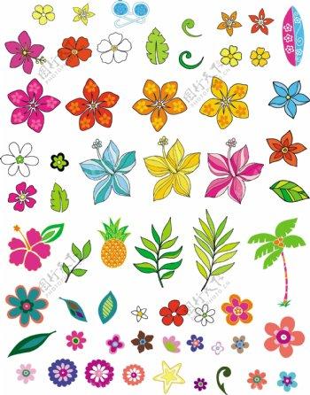 各种花朵矢量图下载