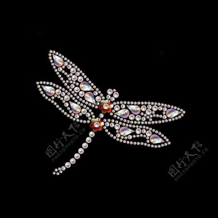 烫钻动物昆虫蜻蜓免费素材