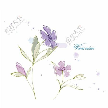 线条花朵矢量图
