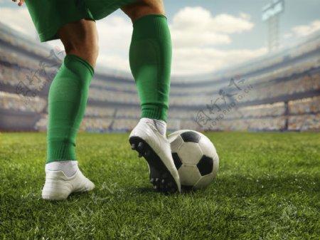 世界杯足球场馆足球赛