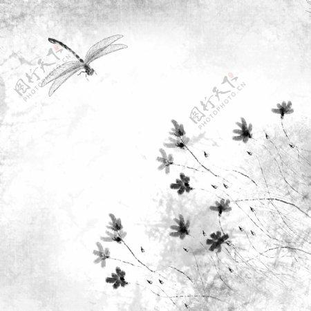 可商用水墨风中国风昆虫蜻蜓植物花春天
