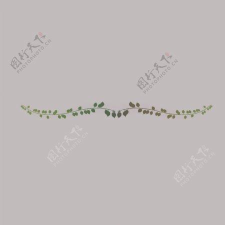 草木花边花纹边框自然