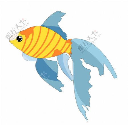 水生动物鱼类
