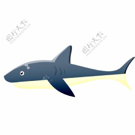 鲨鱼海洋动物