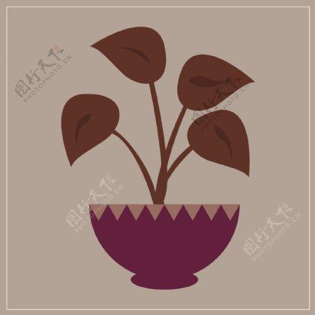 植物盆栽大叶子矢量手绘图