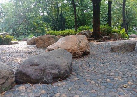 石头岩石大石头
