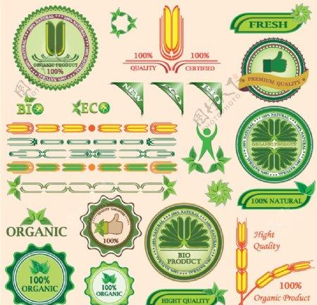 绿色图标标签设计