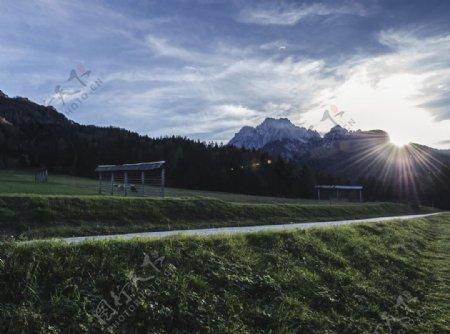 足球场绿荫