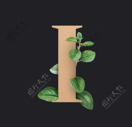 字母I叶子