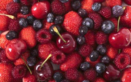 樱桃树莓桑葚草莓集合