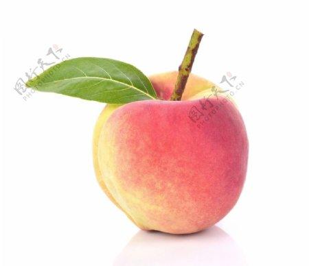 桃子高清白底图