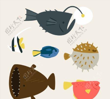 可爱海洋鱼类图片