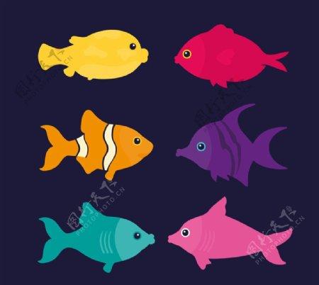 彩色鱼类设计图片