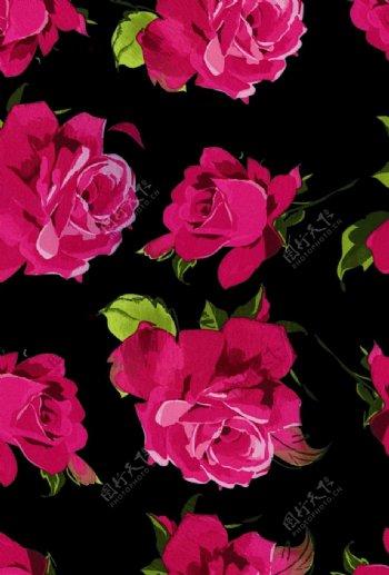玫瑰数码大牌印花爆款图片