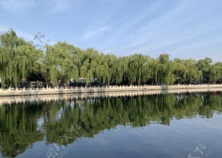 蓝天白云海水绿植倒影图片
