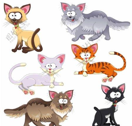卡通漫画猫图片