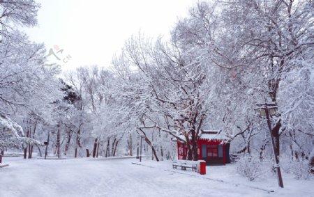 雪中的亭子长凳图片