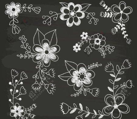 手绘花卉矢量图片