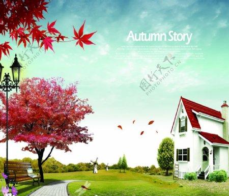 枫树房子图片