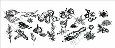 手绘葱姜蒜调料设计素材图片