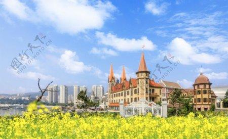 油菜花城堡高楼图片
