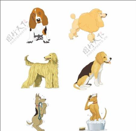 狗狗矢量图图片