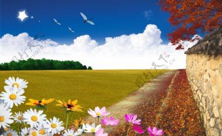 摄影自然景观自然风景图片