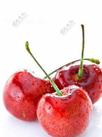 樱桃水果图片