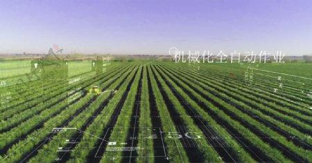 数字农业智慧农业农业生态图片