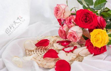 浪漫玫瑰花束拍摄素材图片