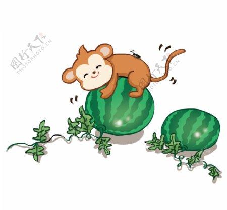 抱着西瓜的小猴子图片