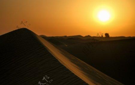 沙丘日出图片