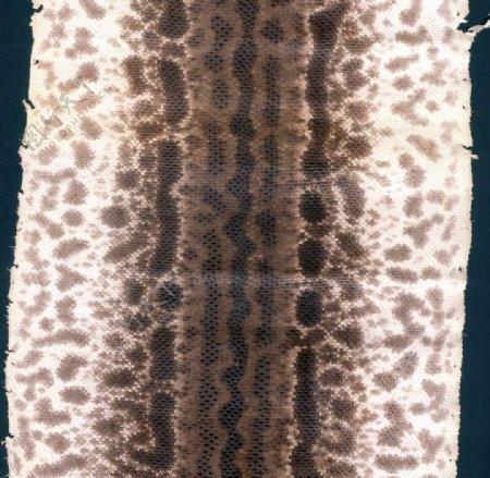 沙蛇扫描件蛇纹沙蛇纹图片