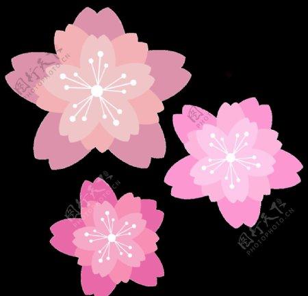 粉色桃花樱花图片