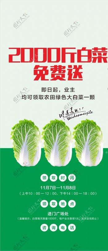 爱心助农有机蔬菜免费送白菜图片