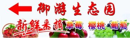 草莓樱桃葡萄图片