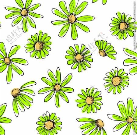 矢量菊花图片