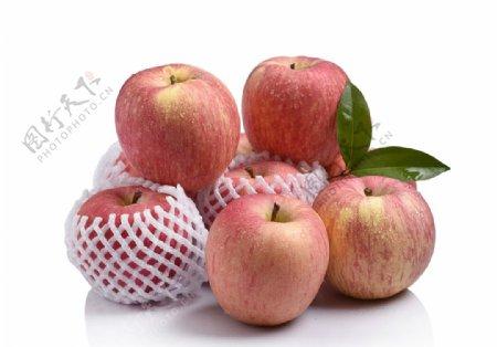 苹果摄影素材图片