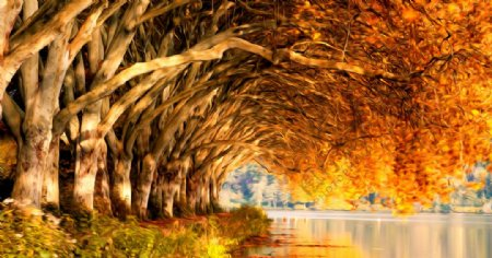 树阴风景油画图片