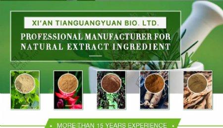 绿色环保健康农产品banner图片