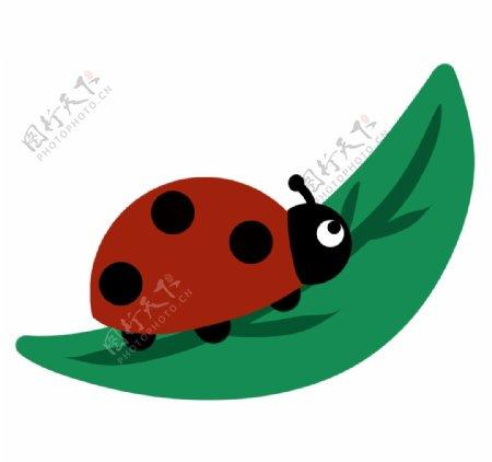 卡通手绘瓢虫图片