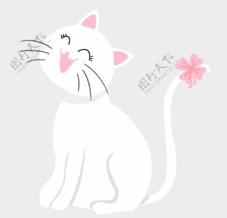 可爱的白色小猫图片
