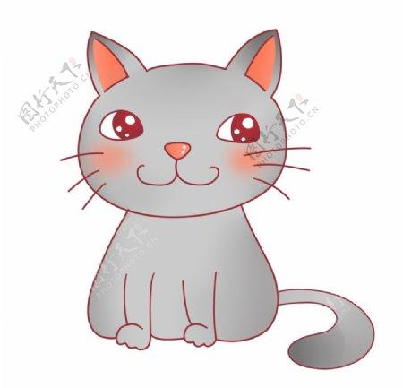 可爱灰色猫咪图片