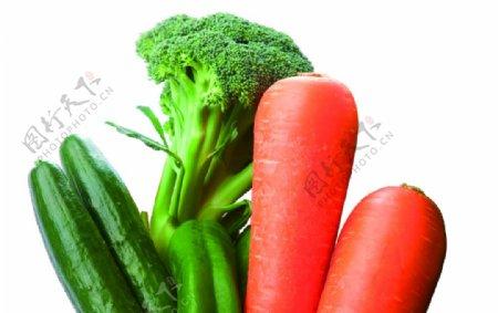 黄瓜胡萝卜花椰菜青椒透明免抠素图片