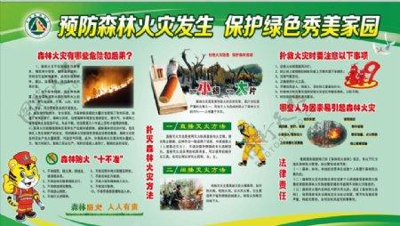 预防森林火灾发生保护绿色秀图片