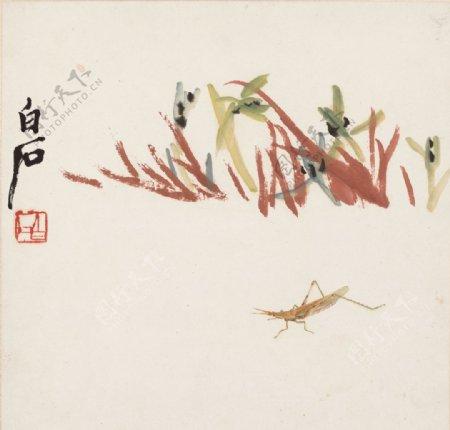 齐白石国画兰草箭头蝗图图片
