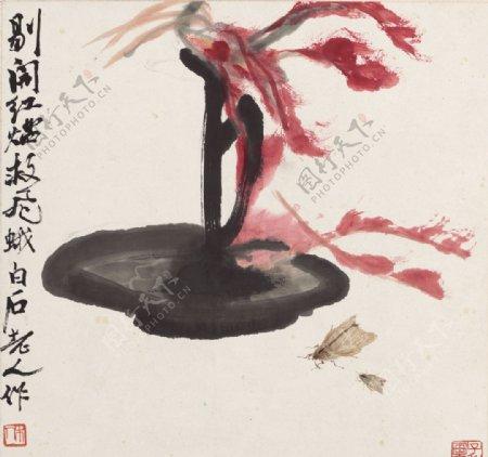 齐白石国画红烛飞蛾图图片